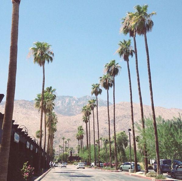 Sunbathing nude palm springs