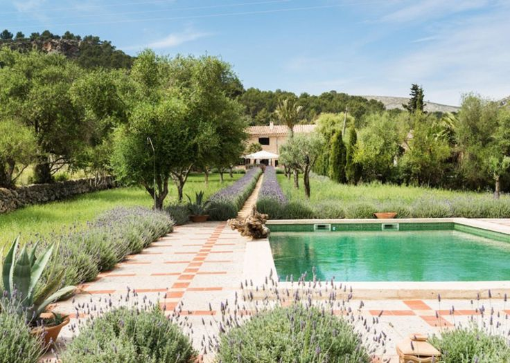 ...walk lined with lavender 'hedge'! MB House Mallorca | Lucas Fox | Est Magazine