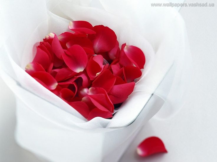 Liebe - Bild für den Desktop: http://wallpapic.de/abstrakt/liebe/wallpaper-7145
