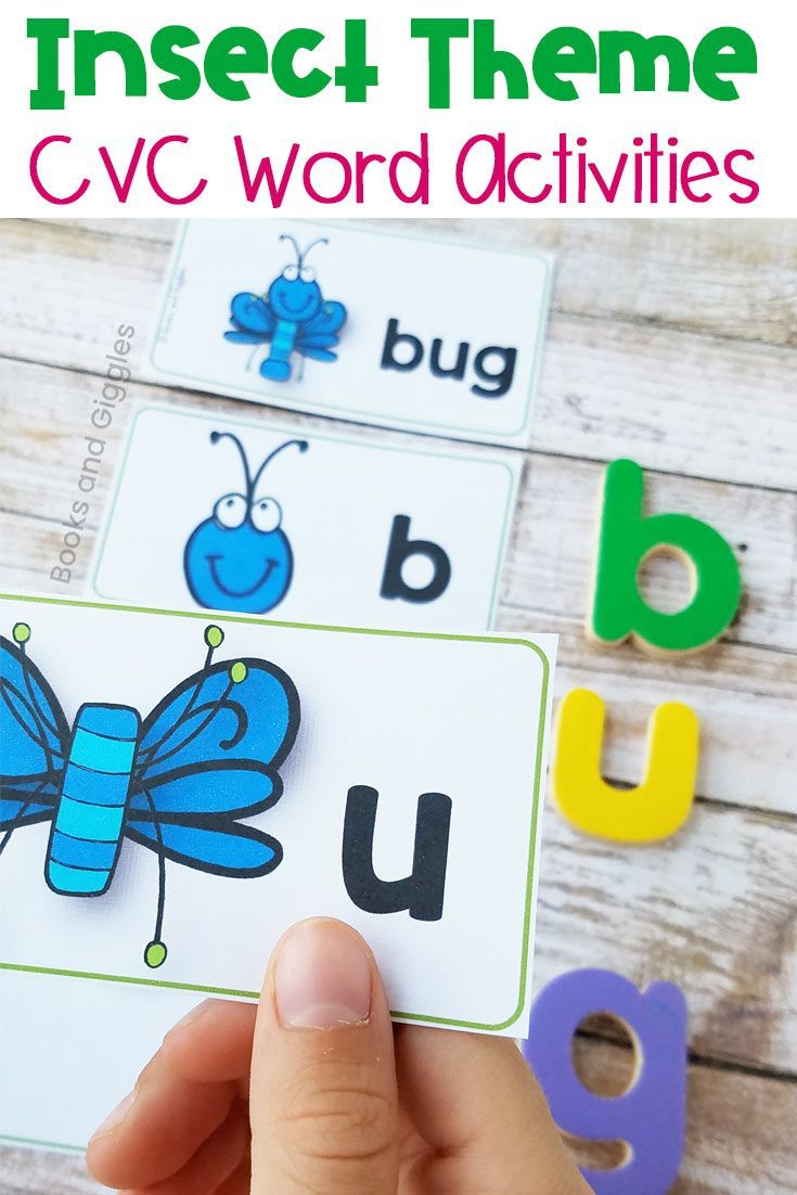 Insect CVC Word Literacy Center Activities BUNDLE   THEMES - Bugs