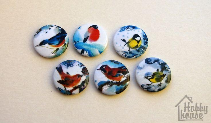 зимние птички-6х