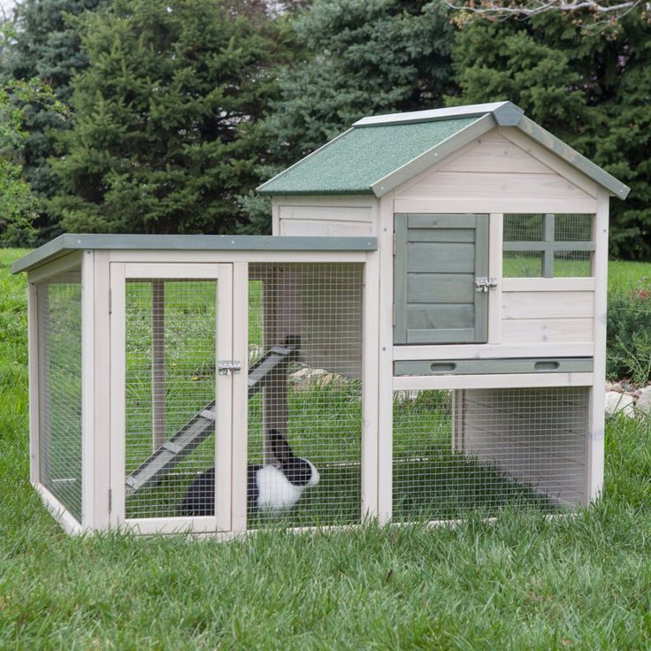 Keep your critters protected and active with the Boomer & George White Wash Rabbit Hutch. Sturdily constructed of solid, fir wood with a whitewash finish, it is perfect for country settings. The green asphalt roof is weather-resistant and ensures years of durability. Your rabbits will enjoy hopping up the ramp to the second level and taking in the view from the plexi-glass window. Cleanup is a breeze with the plastic-lined tray. The hutch has multiple doors so you can reach the rabbit whe...
