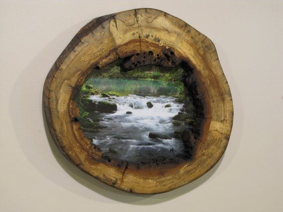 84 Best Hollow Logs Images On Pinterest Stems Wooden