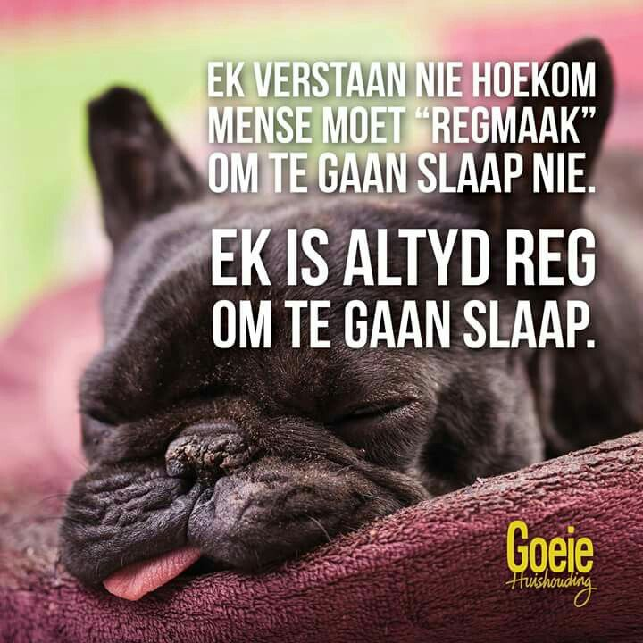 Regmaak om te gaan slaap... #Afrikaans #Dierbaar