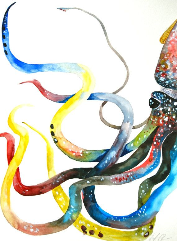 1000 images about art octopus on pinterest for Colorful octopus painting