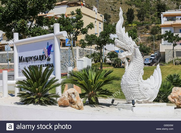 Download this stock image: Butterfly Park near Benalmadena Costa del Sol Andalucia Spain - G55D0W from Alamy's library of millions of high resolution stock photos, illustrations and vectors.