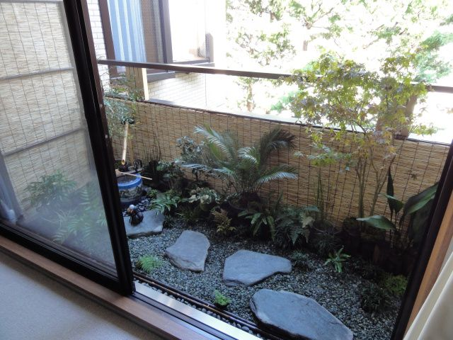 My new Japanese garden AFTER