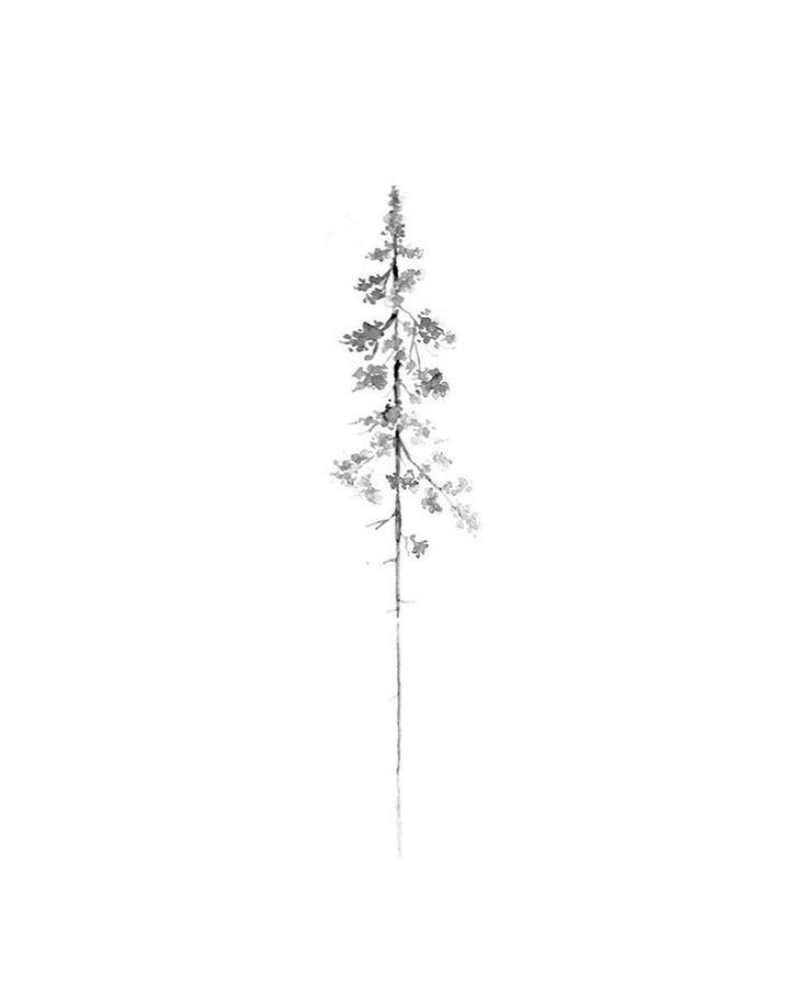 pine tree :-)-#Tatoo #Graffititu