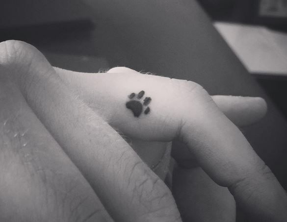Dainty dog paw tattoo for my golden retriever Max! Love the placement.