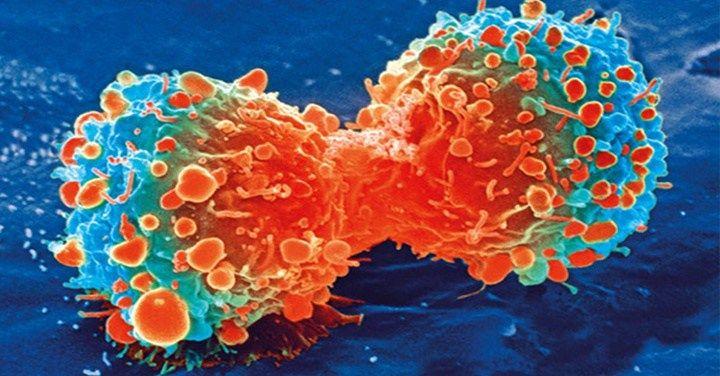 Kanker genezen, IEDEREEN moet het weten!