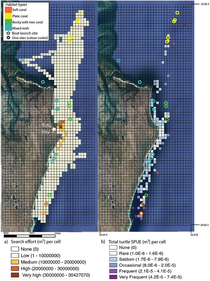 Williams et al. 2017. Spatial Distribution and Residency of Green and Loggerhead Sea Turtles Using Coastal Reef Habitats in Southern Mozambique. Frontiers in Marine Science (3) 288. Figure 1. Search effort (insert a) (standardized in m2 and gridded into 500 × 500 m cells) from boat trips along the Inhambane coast, Mozambique.
