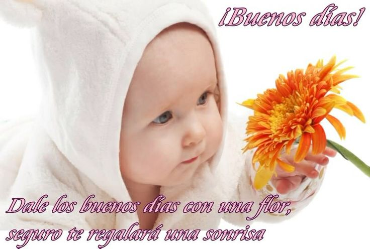 Buen dia: Google Image, Cute Baby, Baby Gifts, Personali Gifts, Baby Boys, Adorable Baby, Baby Photo, Funny Baby, Beautiful Baby