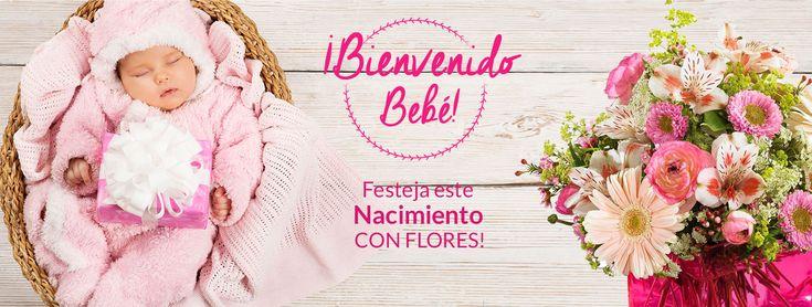 Florerias en MEXICO (CIUDAD)-MEXICO DF, Mexico. Floristerias MEXICO (CIUDAD)-MEXICO DF Envio de Flores