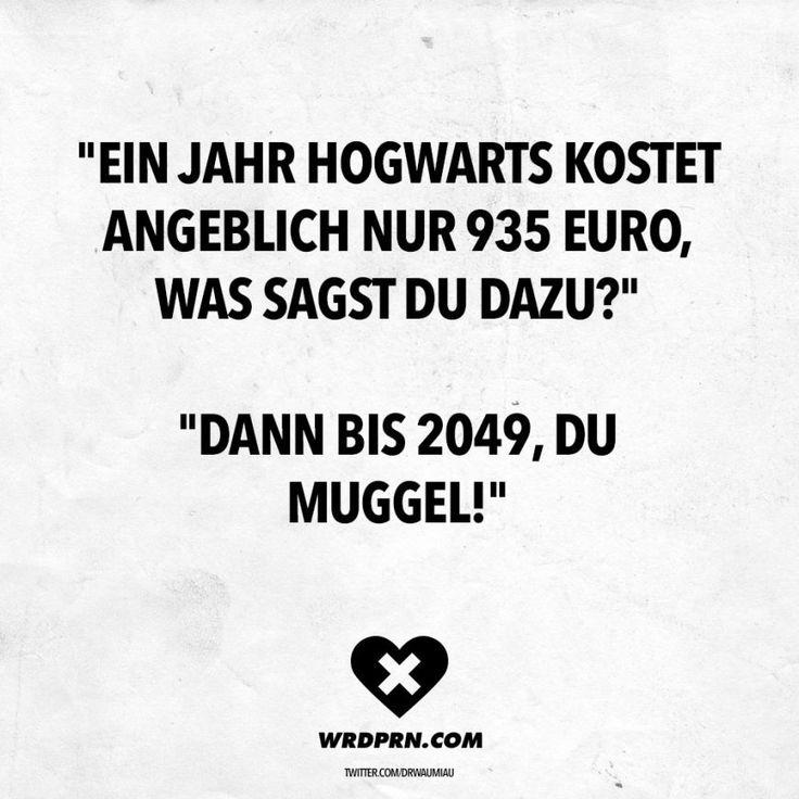 """""""Ein Jahr Hogwarts kostet angeblich nur 935 Euro, was sagst du dazu?"""" """"Dann bis 2049, du Muggel!"""""""
