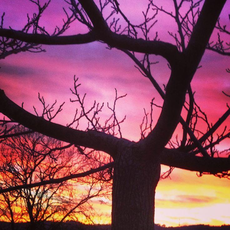 Magia al tramonto