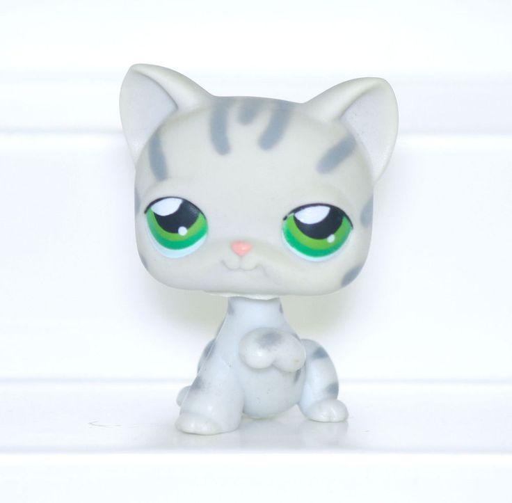 M s de 1000 ideas sobre juguetes caseros para gatos en pinterest juguetes para gatos collares - Juguetes caseros para conejos ...