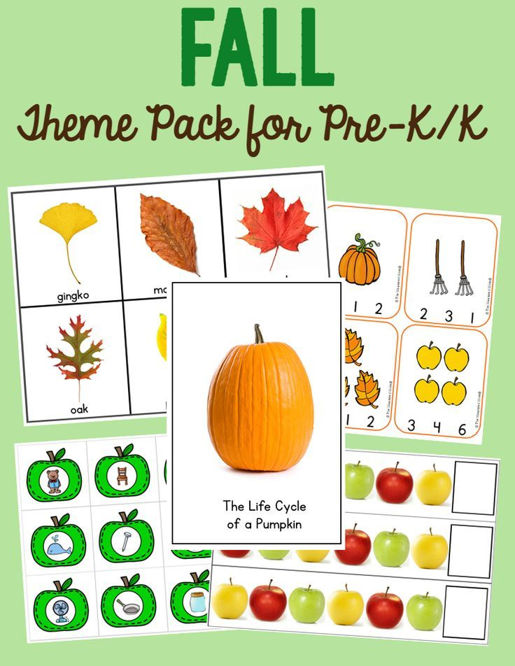 preschool fall theme 191 best fall theme images on fall autumn 174