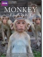 Primate Films Database | Department of Anthropology