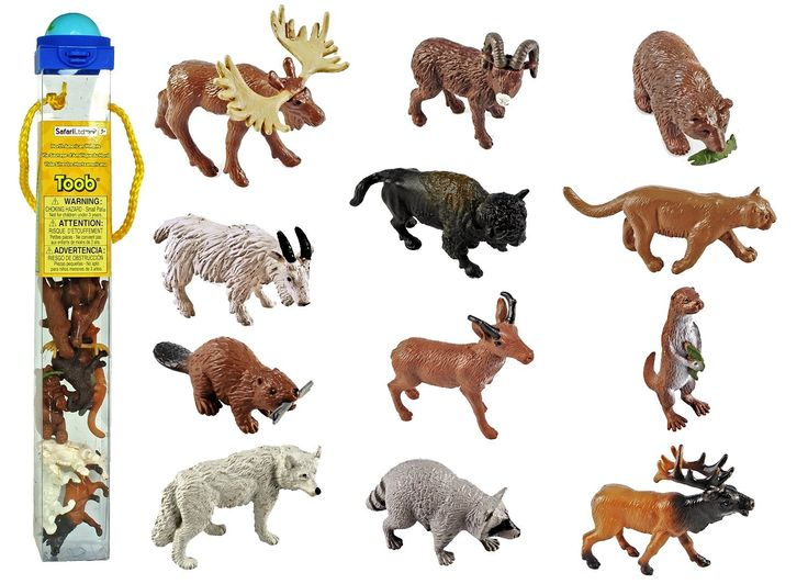 Amazon.com: Safari Ltd Wild Safari North American Wildlife TOOB With 12 Favorite Animal Toy Figurines Including a Mountain Lion, Wolf, Elk, Big Horn Ram, Bison, River Otter, Raccoon, Pronghorn Buck, Moose, Grizzly Bear and Beaver.: Toys & Games