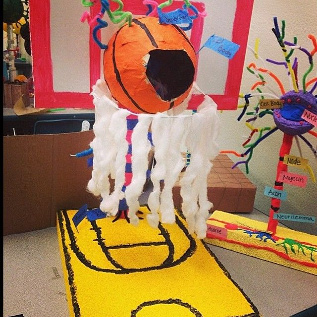 Check out this awesome #regram from @loopypoopy08 of her neuron model project with a #MarchMadness theme. #weareevit