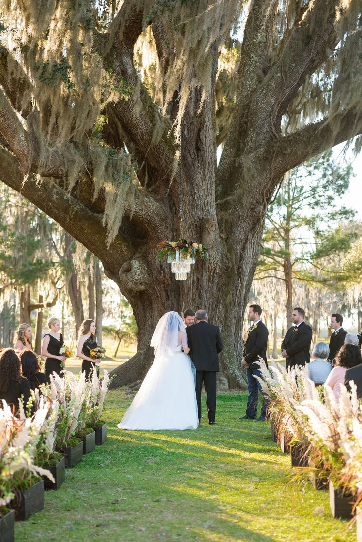 at this ranch wedding, the outdoor aisle is lined with tall feathery pampas…