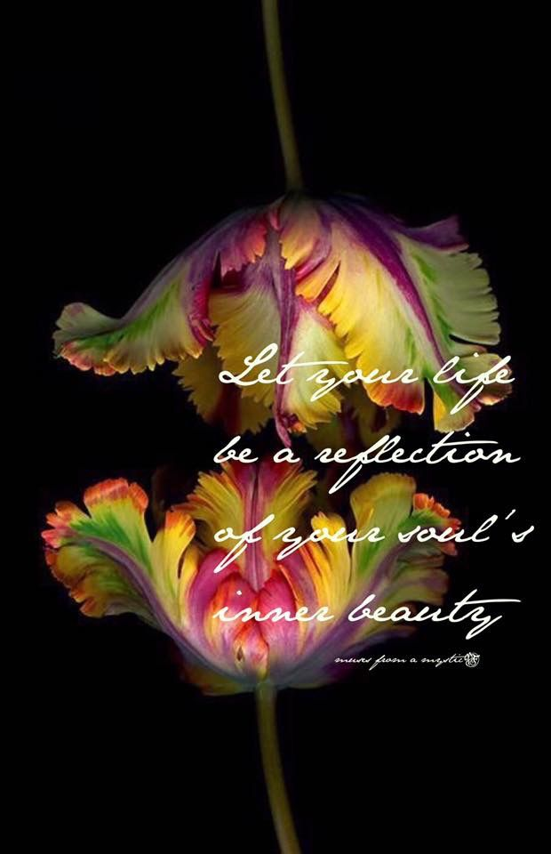 Pin By Brandy Norwood Wilson On Quotes Flowers Parrot Tulips Tulips