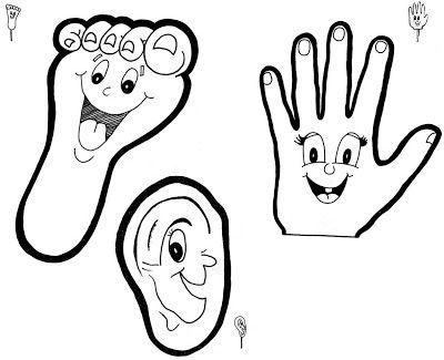 Lichaamsdelen: teen, voet, oog, hand, oor.