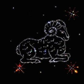 Ovan – godišnji horoskop 2016
