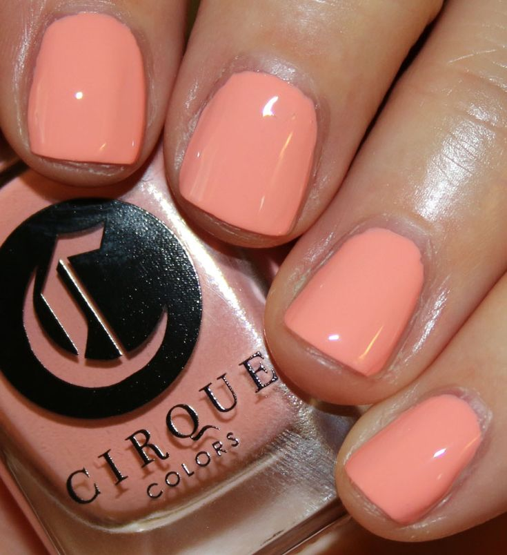 cirque colors lox and sable - Sable Color Cultura