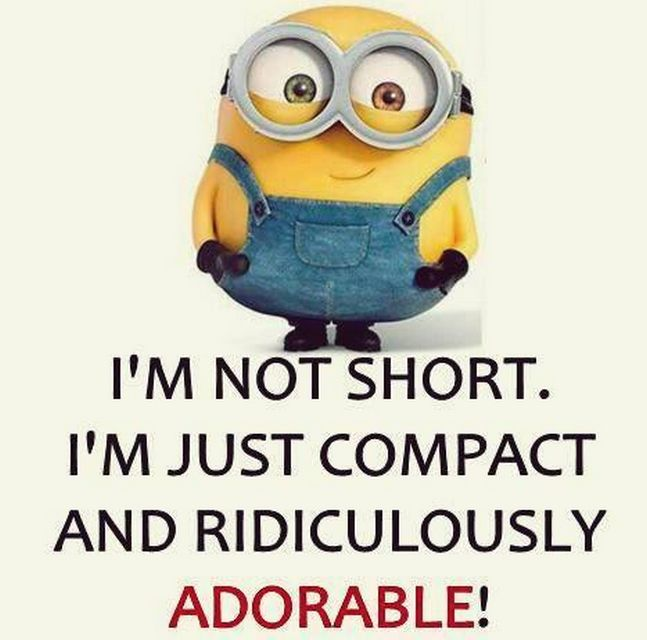 Minion Girl Quotes: 1000+ Ideas About Short People Problems On Pinterest