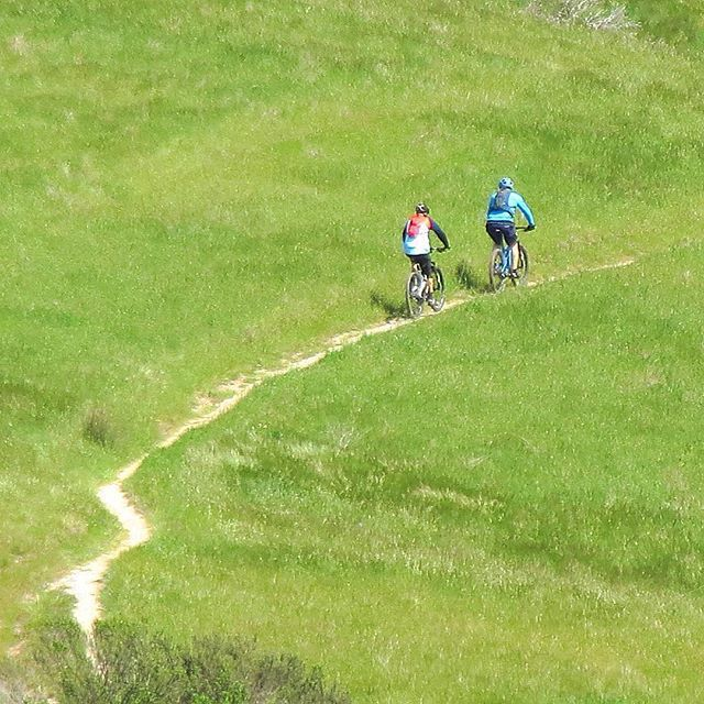 Ascending the green hills of Monterey . . . #norcal #cali #california #mtb #mtbpictureoftheday #cyclingshots #cycling #greenhills #mountainbike #mountainbikes #sıngletrack #monterey #fortord #trail #spring #spring2017 #seaotterclassic #seaotter #marinalocals #montereybaylocals - posted by Chris Fox https://www.instagram.com/chrisfoxdesign - See more of Marina, CA at http://marinalocals.com