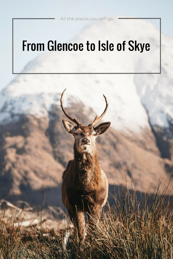 Scotland - Read more about our trip from Glencoe to Isle of Skye!  Travel & Photography | All the places you will go