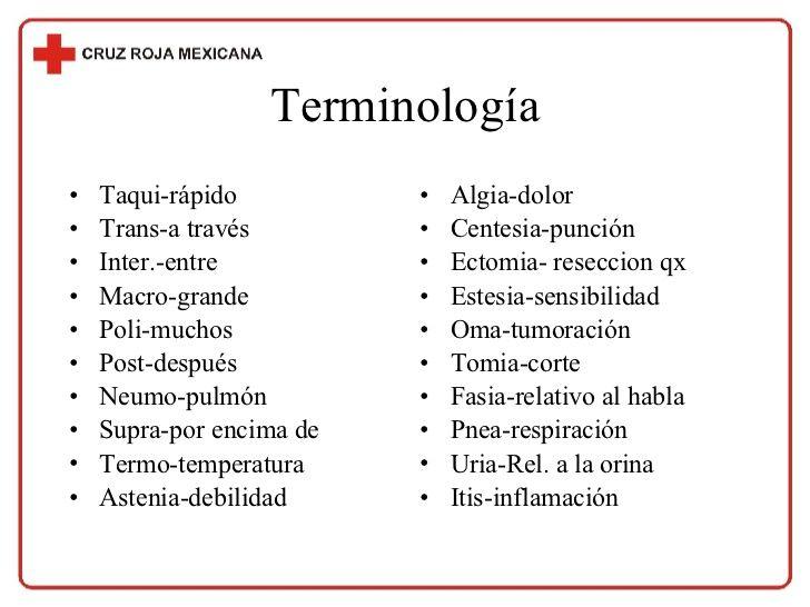 Terminologia Abreviaturas