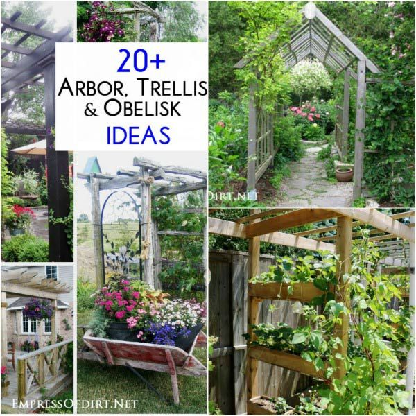 20+ Arbor, Trellis, and Obelisk Ideas to use in your garden | Empress of Dirt