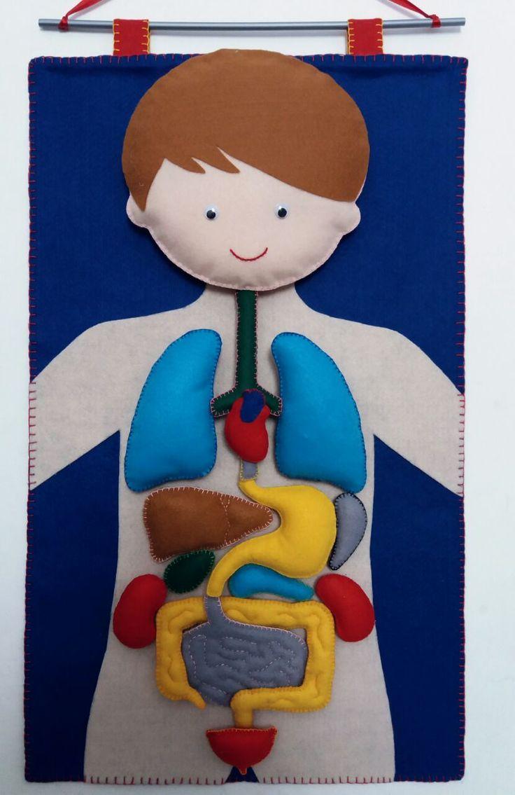 Faça você mesmo: um corpo humano de feltro para as crianças