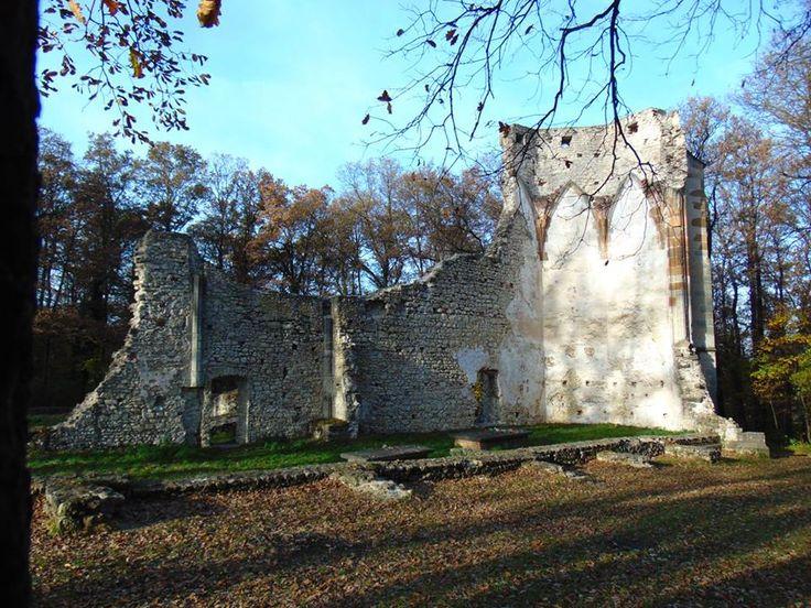 1483-ban Veszprémtől nyugatra a Bakony szélén, Vázsony vára szomszédságában nagyságos Kynyzy Pál úr nagyságos kaza-i Magyar Balázs segítségével megépítette a vázsonyi kolostort Szent Mihály főangyal tiszteletére, és odaadta az egyetlen magyarországi alapítású szerzetesrend, a pálosok remetének.…