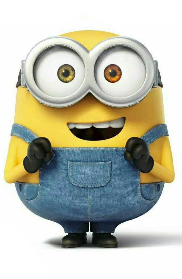 103 Best Images About Bob The Minion On Pinterest