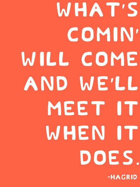 What's comin' will come and we'll meet it when it does. -Hagrid Harry Potter
