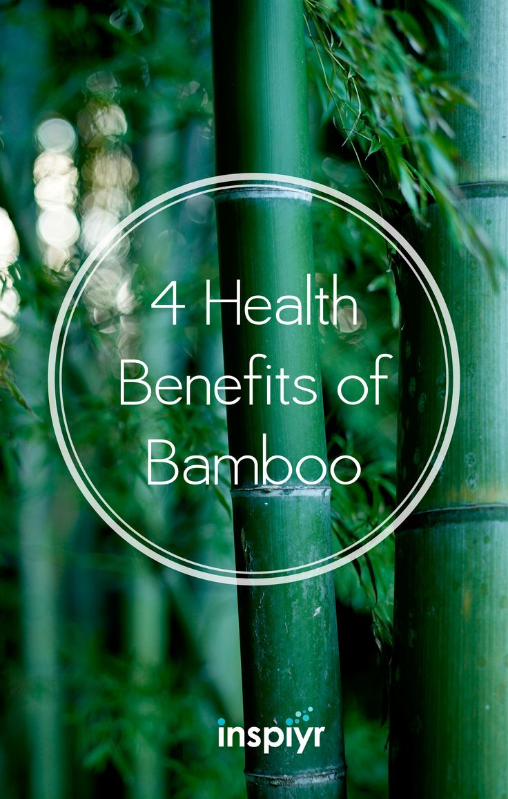 4 Health Benefits Of Bamboo  #bamboo #health #cleanair #cleanwater