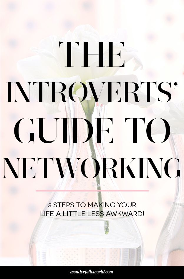 Networking For Introverts   Wonderfelle World