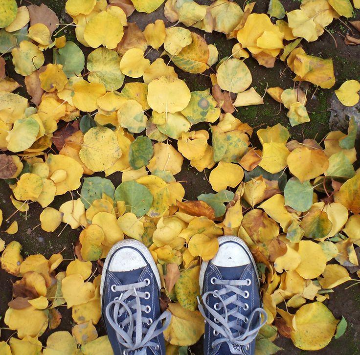 otoño...