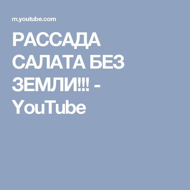 РАССАДА САЛАТА БЕЗ ЗЕМЛИ!!! - YouTube