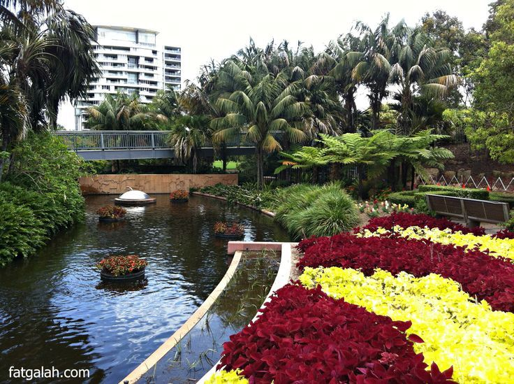 Roma Street Parklands http://bit.ly/1n5taw5   #Brisbane #Queensland #Australia #travel