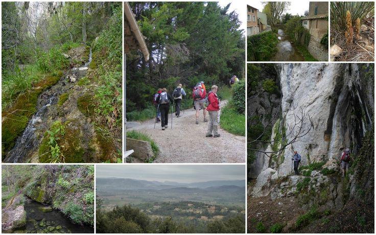 La Roquebrussanne 17/04/15