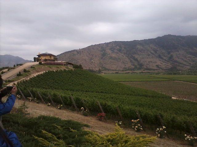 Viña Santa Cruz, lolol - Valle de Colchagua