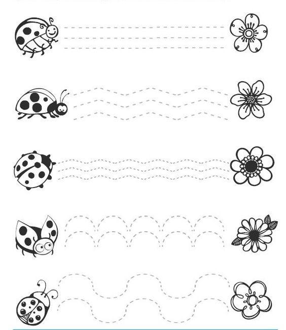 ladybug trace line worksheets (1):