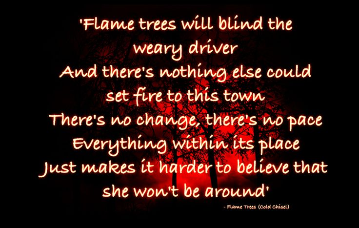 FLAME TREES - COLD CHISEL