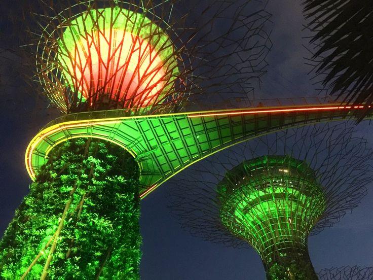 Ogrody przyszłości, czyli Gardens by the Bay w Singapurze
