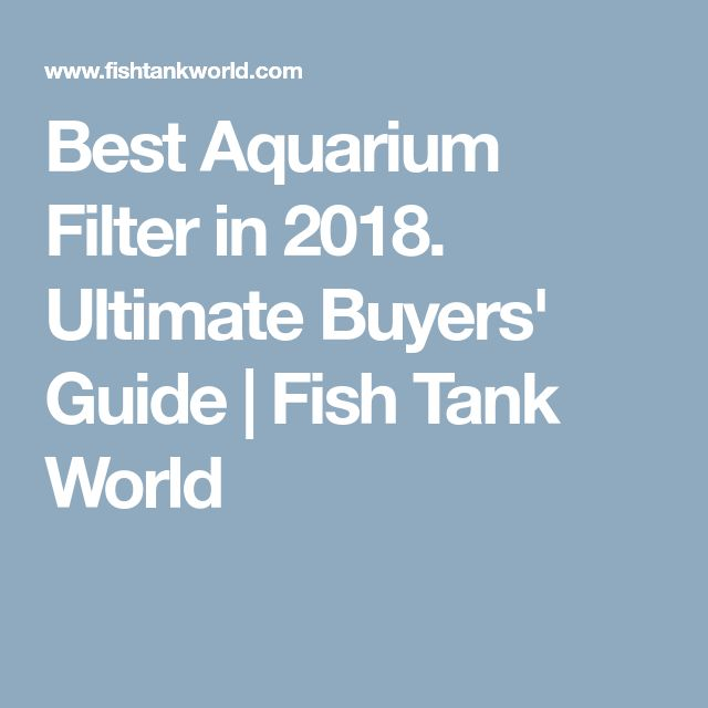 Best Aquarium Filter in 2018. Ultimate Buyers' Guide   Fish Tank World