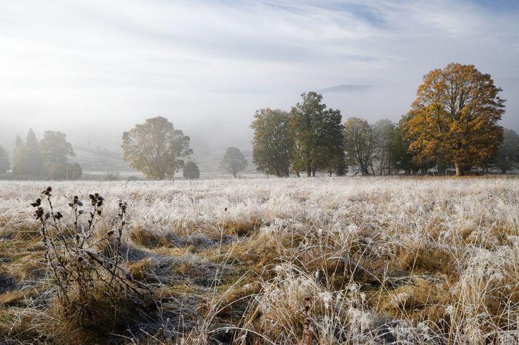 Šumava - podzim na Kepelském Zhůří
